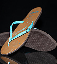 Reef Flipflops Buckle Up brown/aqua